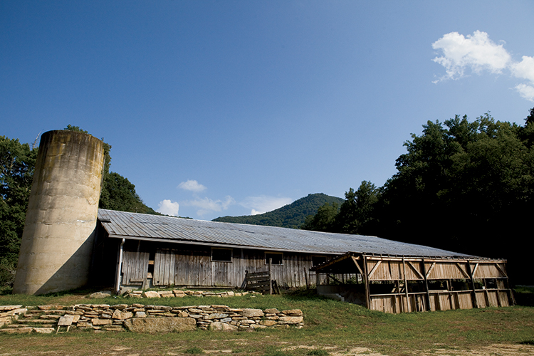 Hickory Nut Gap Farm Tours