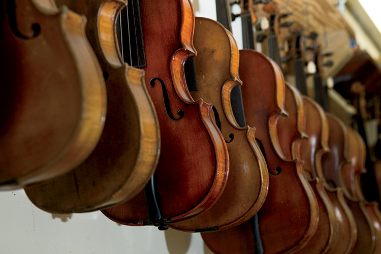 Montgomery Violins