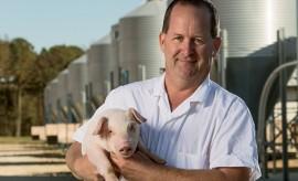 North Carolina hog farmers