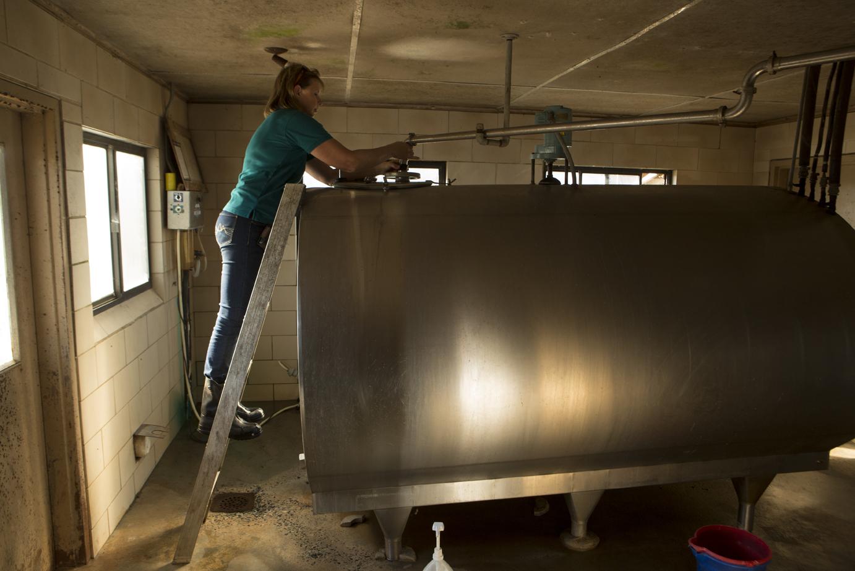 Karen Jordan NC Farm Bureau