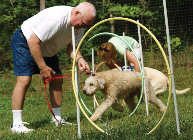 Four Paws Kingdom Dog Campground